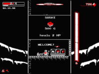 Downwell PC 3