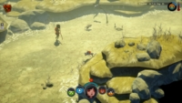 The Flame In The Flood - Switch - Grassland - JPG