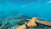 UnderWaterSpearFishing